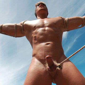 Bound jock gets his ass violated   Daily Dudes @ Dude Dump