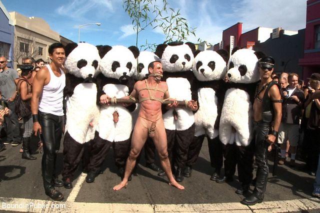 Gay panda toy fetish | Daily Dudes @ Dude Dump