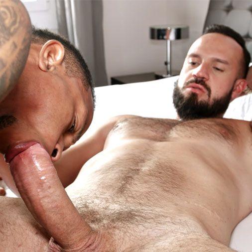 Andy barebacks Cesar | Daily Dudes @ Dude Dump
