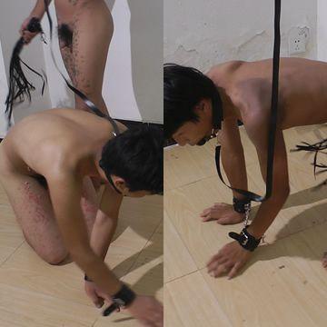 Asian Boy Slaves Doggy Trainning   Daily Dudes @ Dude Dump