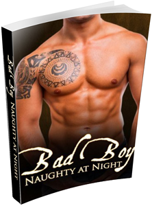 Bad Boy: Naughty at Night Book 1 | Prologue | Daily Dudes @ Dude Dump