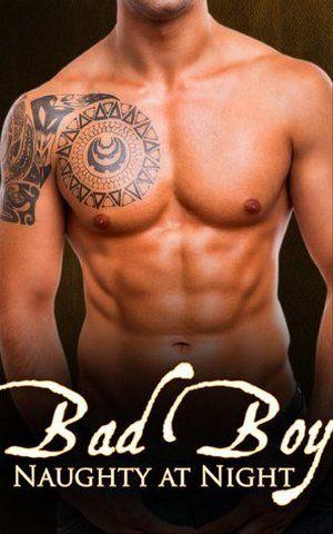 Bad Boy: Naughty at Night Book 1   Daily Dudes @ Dude Dump