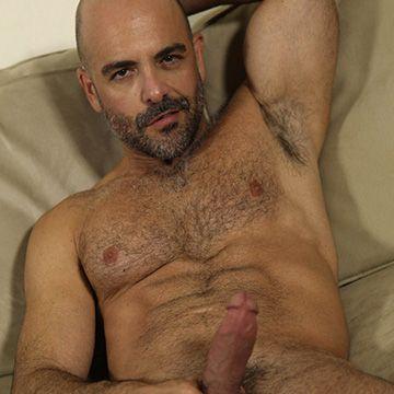 Bald Hairy Hunk   Daily Dudes @ Dude Dump