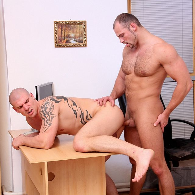 Bareback Office Sex | Daily Dudes @ Dude Dump