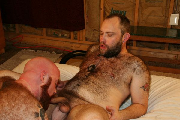 Bear hairy gay scene | Daily Dudes @ Dude Dump