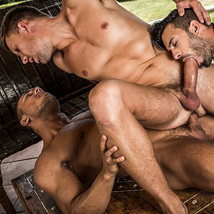 Brock Magnus And Andrey Vic Double-Team Andy Star | Daily Dudes @ Dude Dump