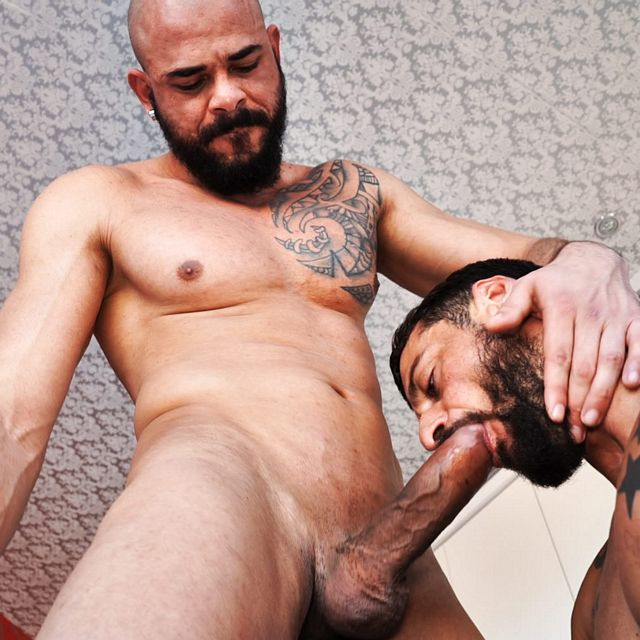 Dalton Sirius powerfucks David Avila bareback | Daily Dudes @ Dude Dump