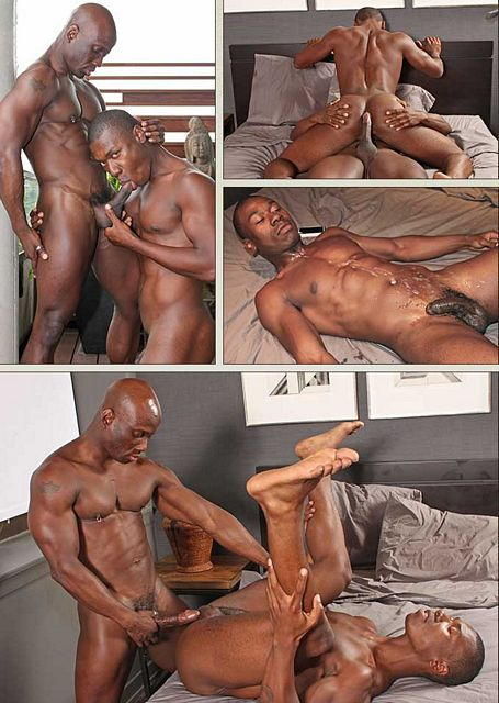 ebony porn gay Here you will be  able to see anal beads put to use as well as sweet ASS fucking all for free!