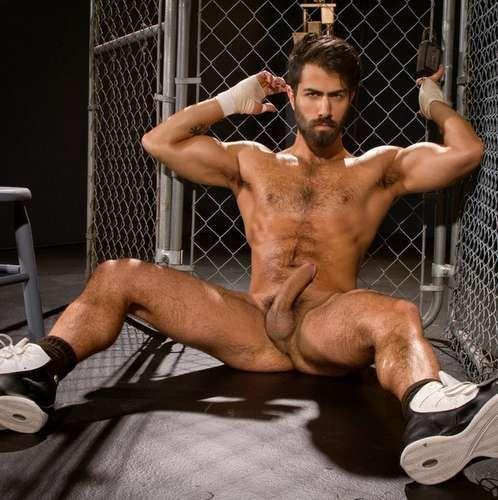 Hairy Gay Porn Star ADAM RAMZI   Daily Dudes @ Dude Dump