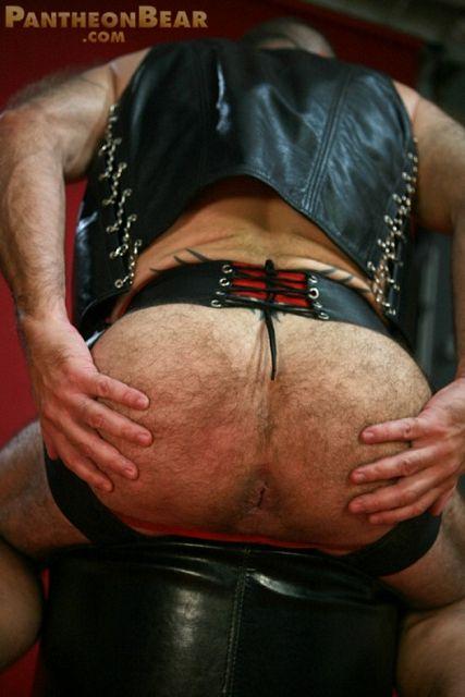 Hairy leather bear | Daily Dudes @ Dude Dump