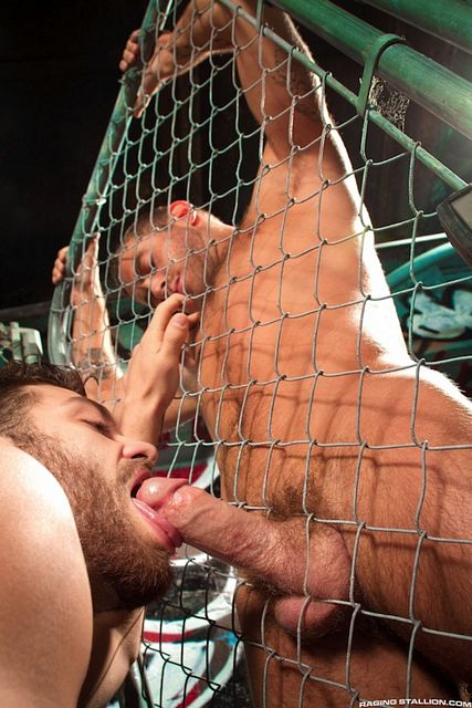 Hairy Men Tommy Defendi And Shawn Wolfe | Daily Dudes @ Dude Dump