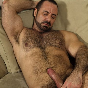 Handsome Muscle Bear   Daily Dudes @ Dude Dump