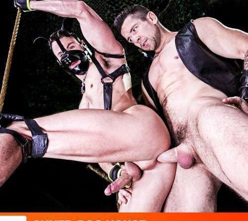 Master Trenton Ducati Pounds His Puppy Skyy Knox | Daily Dudes @ Dude Dump