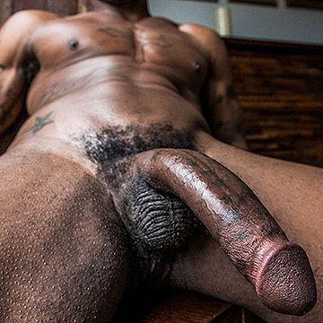 Newcomer Black Pearl | Daily Dudes @ Dude Dump