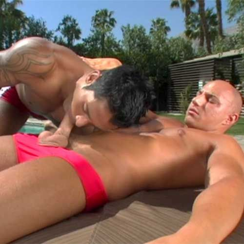 Red Speedo Blowjob | Daily Dudes @ Dude Dump