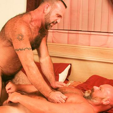 Sexy Bald Daddy Bear BJ | Daily Dudes @ Dude Dump